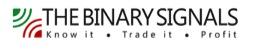 binary signals logo