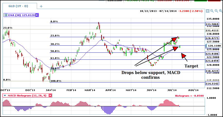 daily gld with fibs