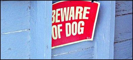 bewareofdog_cc_asa_2.0_wiki_waynewilkinson