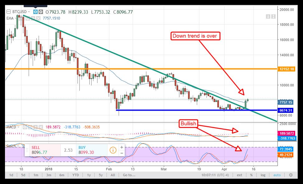 bitcoin bear market non finita)